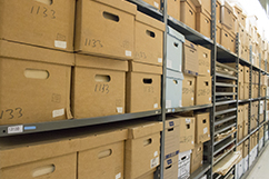 Boxes in Archives