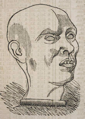 """Johnson the Murderer,"" from The Phrenological Almanac for 1841, by L.N. Fowler. (New York; Philadelphia; Boston, 1841). Osler Library (Almanac Collection), Fowler 1841."