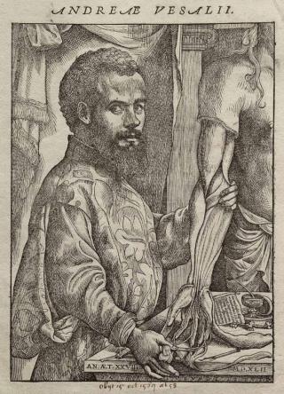 Vesalius' Fabric of the Human Body