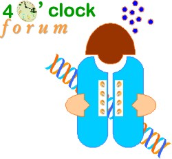 4 O'Clock Forum logo