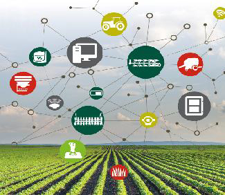 Digital Agriculture: From Supply Chains to Data Chains
