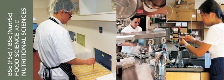 BSc In Food Science/BSc In Nutritional Sciences