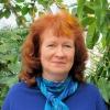 Linda Wykes