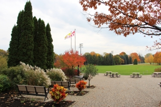Fall on the Macdonald Campus