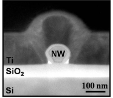 TEM cross-section of a nanowire field-effect-transistor