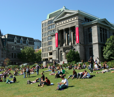 Lower field outside of the Redpath Museum building on McGill campus