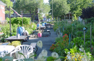 Visits to Community Garden