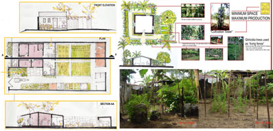 House & garden-holistic design