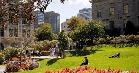 McGill campus in the summer