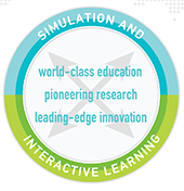 Simulation and interactive learning