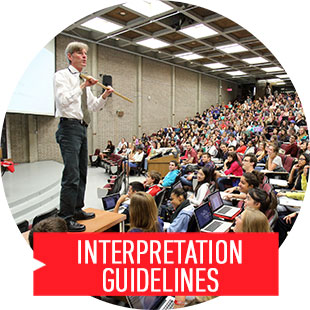 Interpretation Guidelines