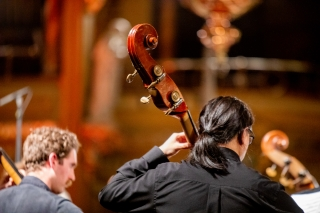 Two doublebass musicians focusing on their music