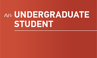 button link to access undergraduate student information