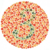 The number 3 embedded in colored dots. Used for testing color vision.