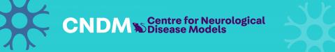 Center for Neurological Disease Models (CNDM)