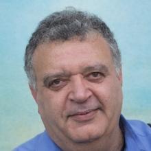Amir Shmuel, PhD