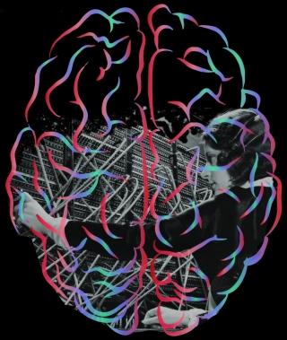 Des chercheurs ont découvert qu'avec un entrainement approprié, le cerveau des primates pourrait utiliser des régions complètement différentes pour effectuer les mêmes tâches.