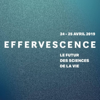 Effervescence Title Tile