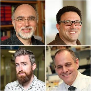 Clockwise from top left, Robert Zatorre, Edward Ruthazer, Dr. Edward Fon, Stuart Trenholm