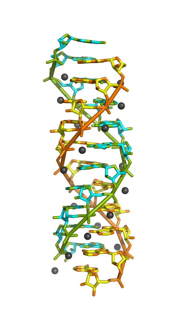 how to build an alpha helix software