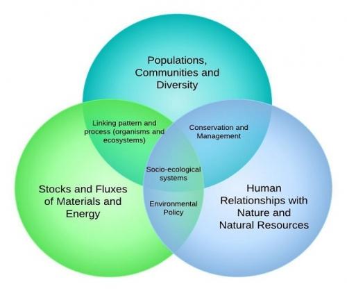 Venn Diagram In Nature Block And Schematic Diagrams