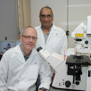 Dr Hugh Clarke and Dr Riaz Farookhi, Reproductive Biology