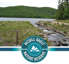 McGill Gault Nature Reserve