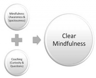 Clear Mindfulness Diagram