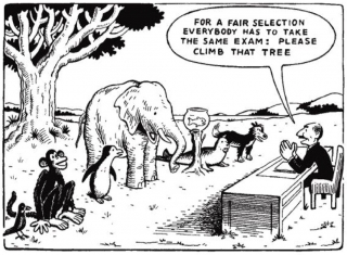 Cartoon showing tests are not always fair and by design favour some over others