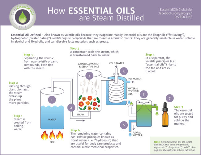 Are All Oils Essential Are Essential Oils Even Oils Office For