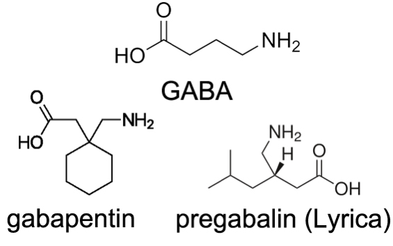 Gaba Supplements: Glorious, Gimmicky or Just Garbage