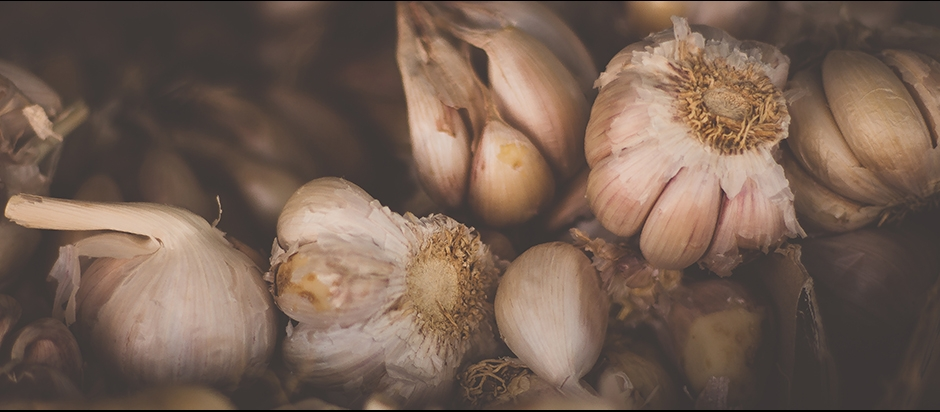 Is it true that garlic in China is grown in human feces and