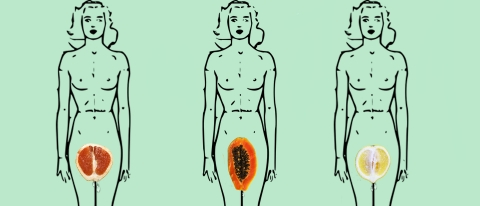 Watermelon and Sex | Office for Science and Society