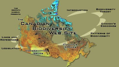 The Canadian Biodiversity Web Site