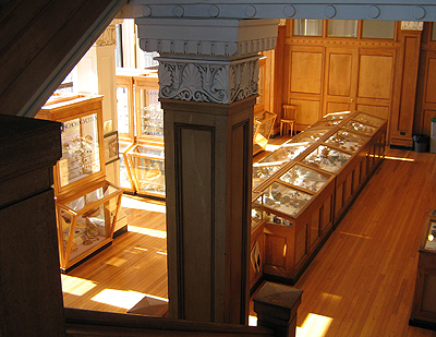 The Hodgson Gallery