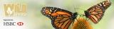 Wild Spaces pollinator program