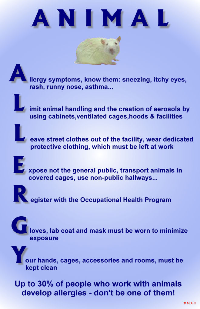 Animal Allergy Poster