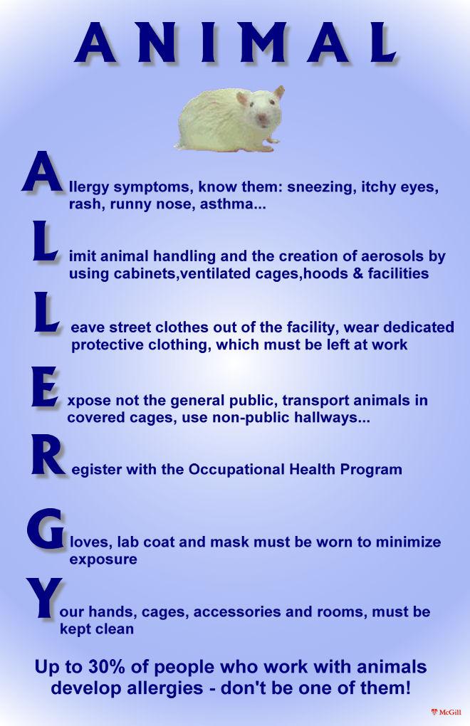 Animal Allergy Poster
