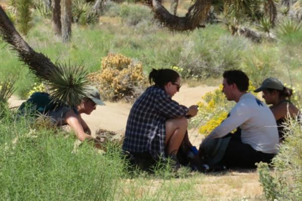 Photo of students in Arizona's desert
