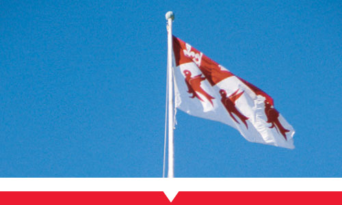 McGill flag waving in the wind