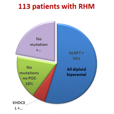 Graph showing that 55% and 5% patients with at least 2 molar tissues have bi-allelic mutations in NLRP7 or KHDC3L