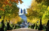 Picture of McGill in the Fall, trees are changing