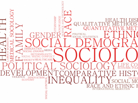 Picture showing different field of sociology