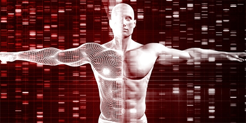 A graphic of a human male body over DNA gel analyses
