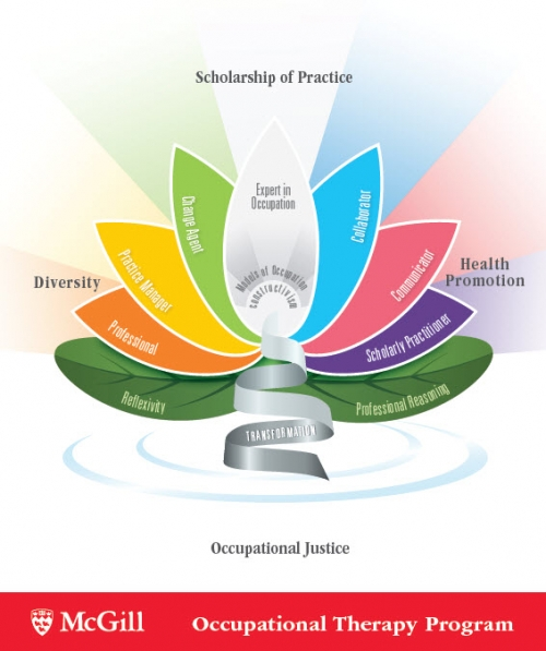 Conceptual Framework School Of Physical Amp Occupational Therapy Mcgill University
