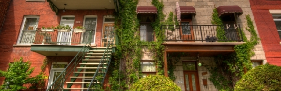 Off Campus Apartments For Rent