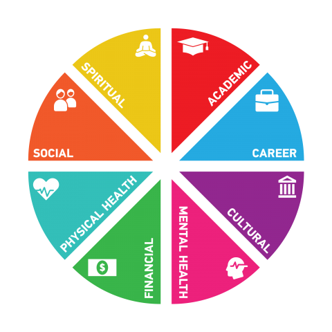 wellness wheel: academic, career, social, cultural, mental health, financial, physical health and spiritual