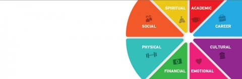 wellness wheel: academic, career, social, cultural, emotional, financial, physical and spiritual