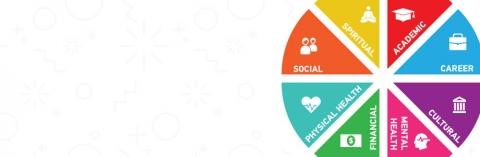 wellness wheel: academic, career, social, cultural, mental health, financial, physical health and spiritual