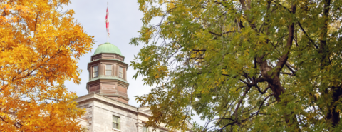 McGill Commitment 2017